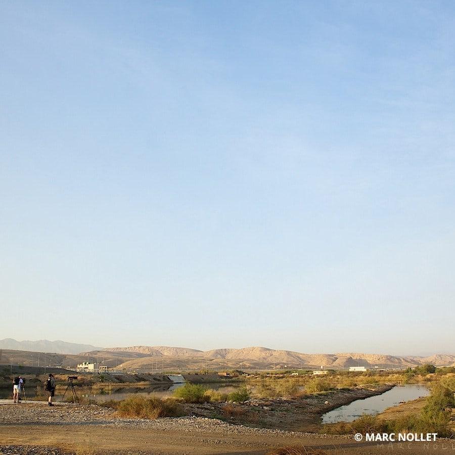 Al Ansab Wetlands