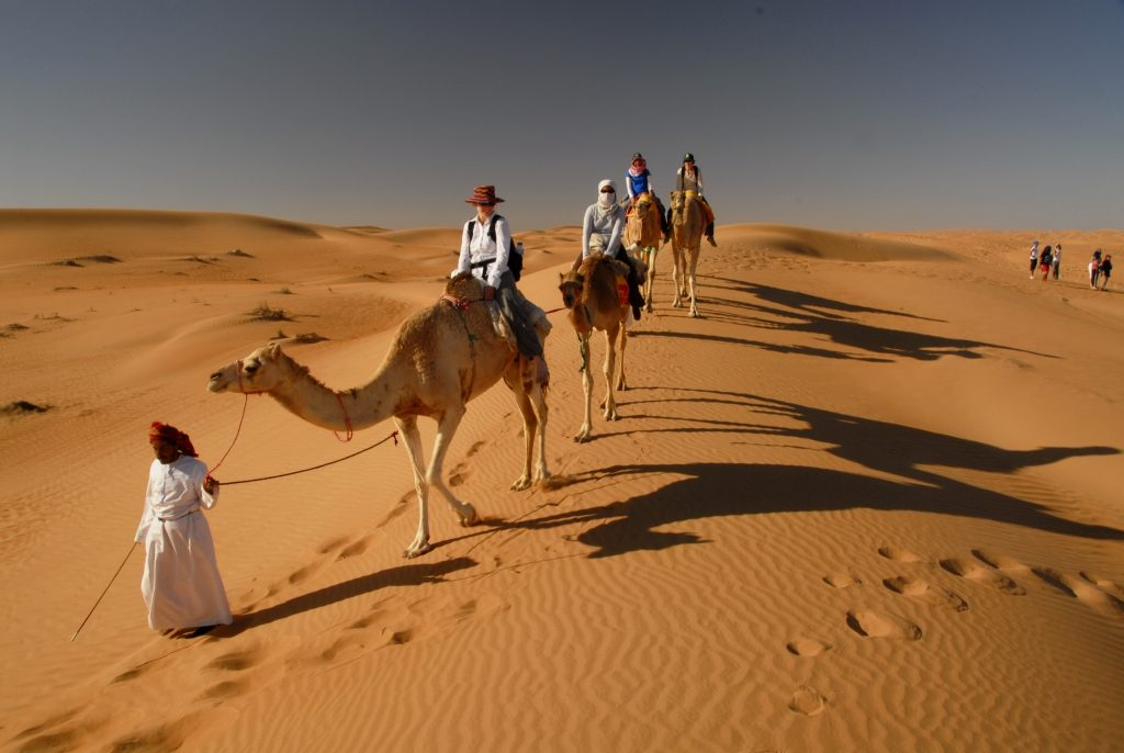 Camel riding at Wahiba Sands