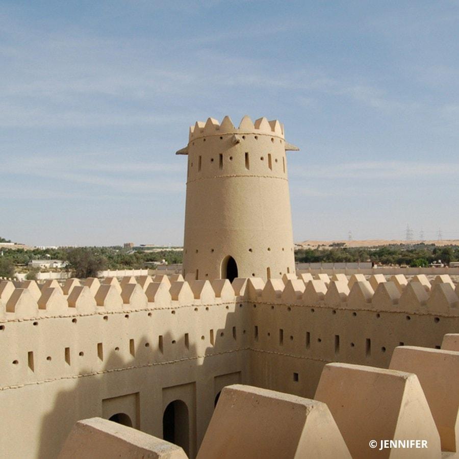 Liwa Castle