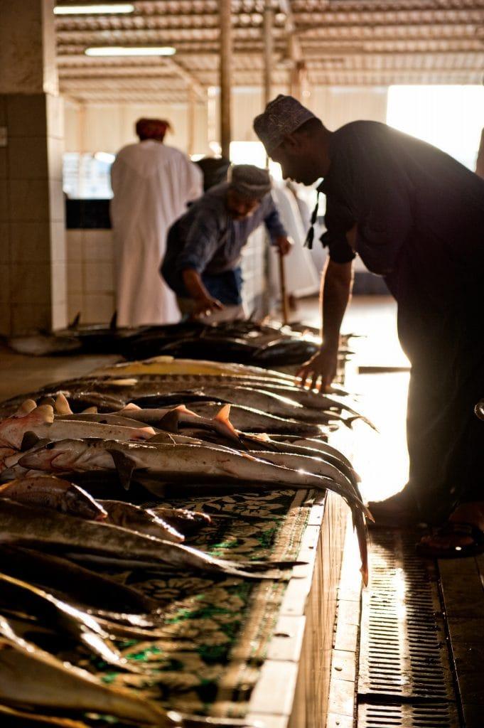 Muscat Muttrah Fish Market Oman 1