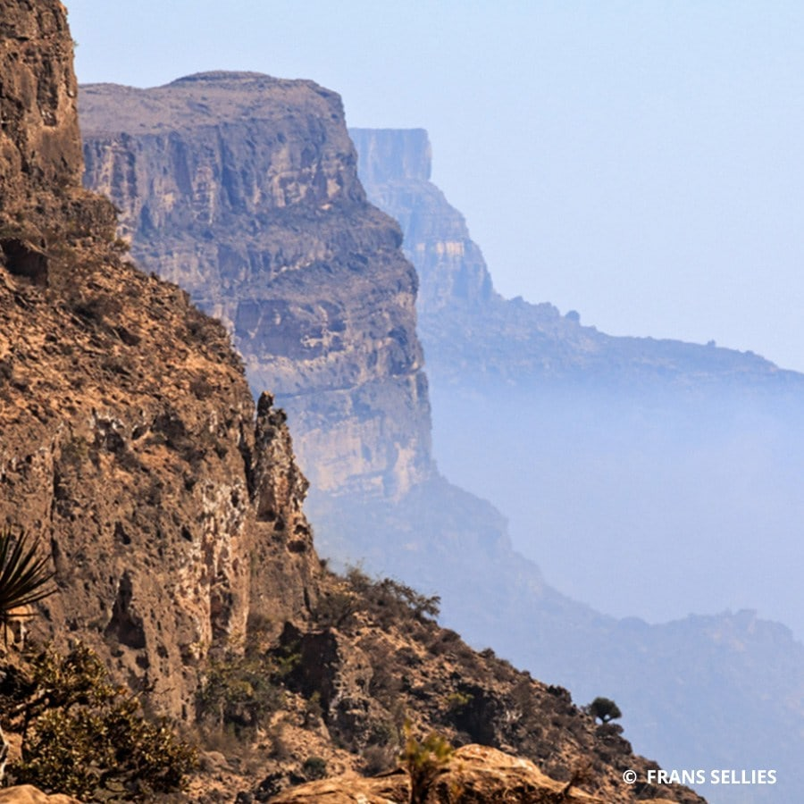 Jebel Samham Nature Reserve