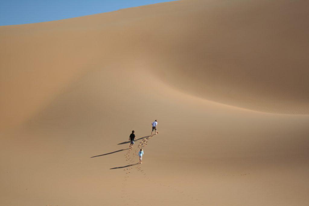 Sand Dune Ash Sharqiyah