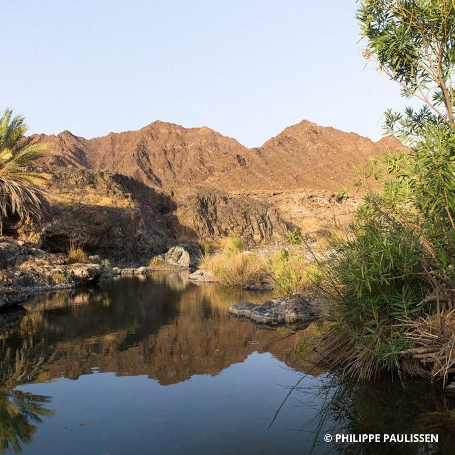 Wadi AlHawasnah